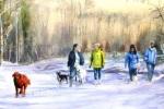 WinterDogWalkers